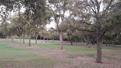 Pícnic Internacional en Parque del Alamillo
