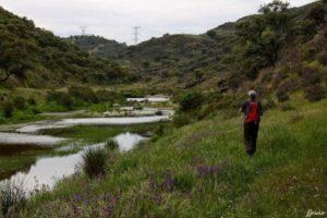 Recorriendo el Camino de Santiago desde Almadén de la Plata al Real de la Jara