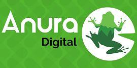 Anura Digital, Expertos en Comercio Electrónico