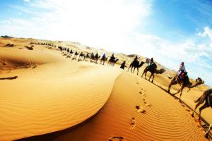 viaje a sahara