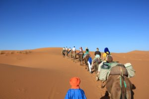 Viaje en camello al desierto