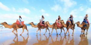 viaje paseo playa camello